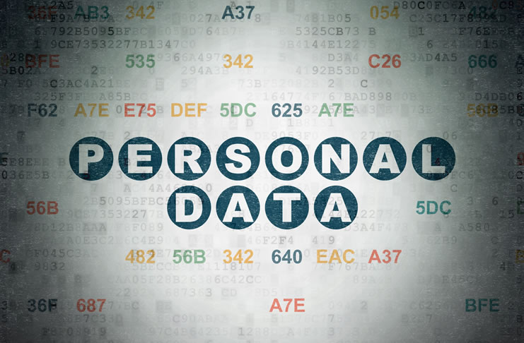 Professional Roles in Personal Data Rights Management