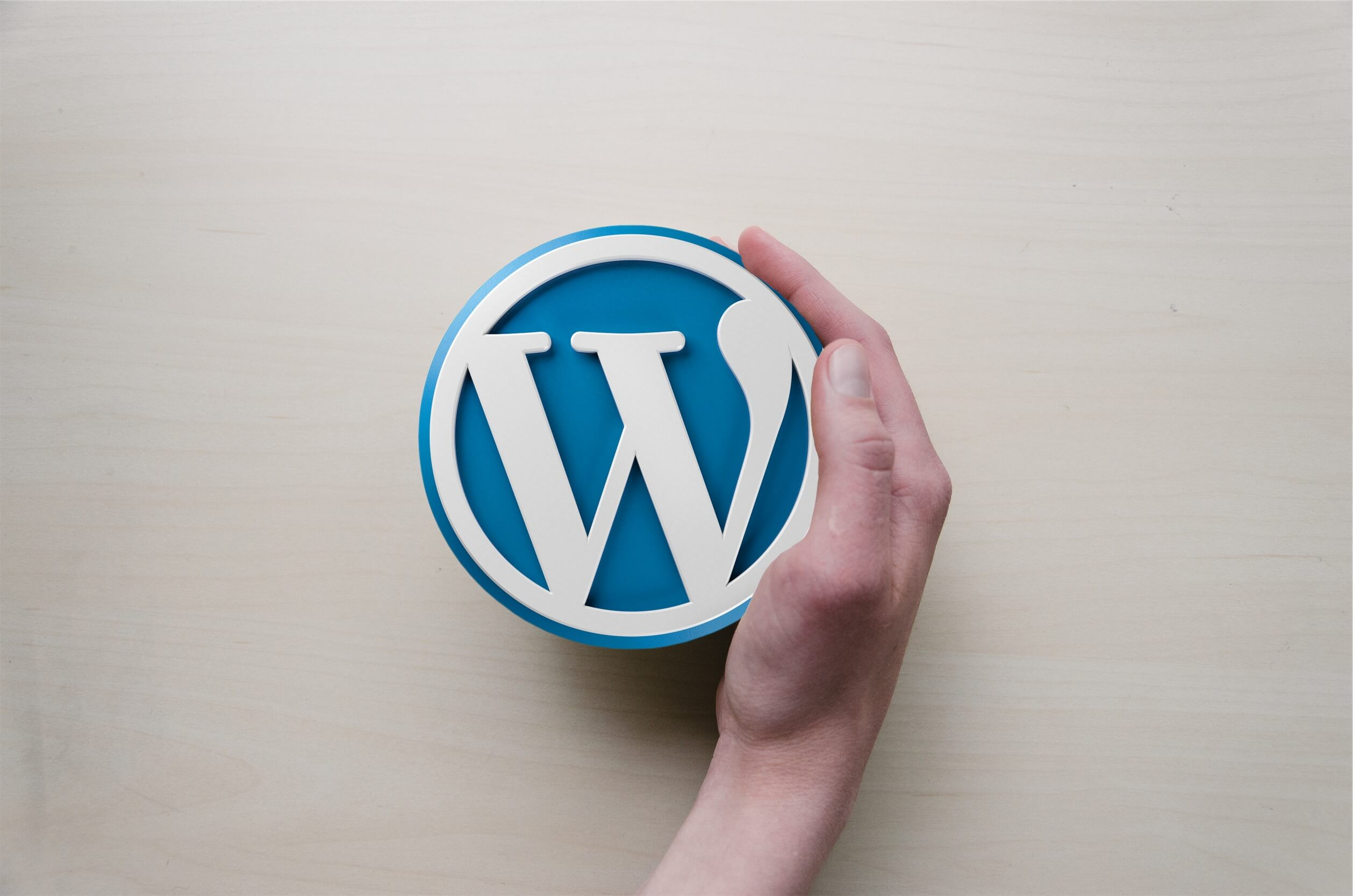 Guide to the WordPress Hosting in 2020